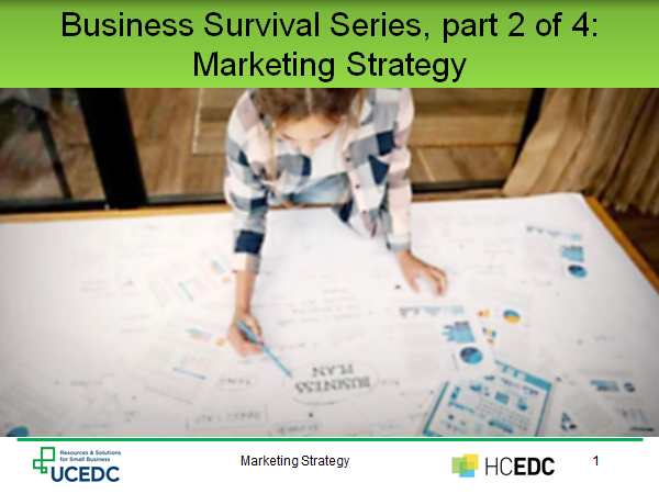 Link to Recorded Webinar part 2 of 4 Marketing Strategy